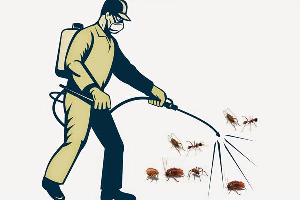 Dịch vụ diệt gián của Oh Yes Pest